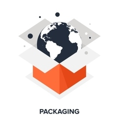 Packaging flat concept vector