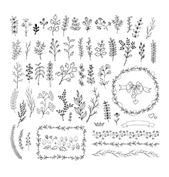 Floral vintage hand drawn collection vector