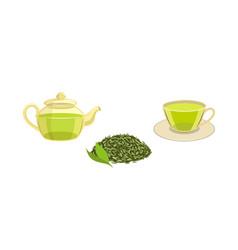 Set - green leaf tea teapot cup of tea vector
