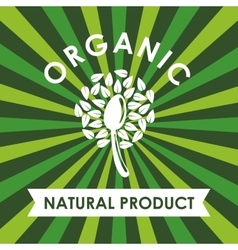 Leaf and spoon icon natural and organic product vector