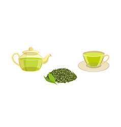 Set - green leaf tea teapot cup of tea vector