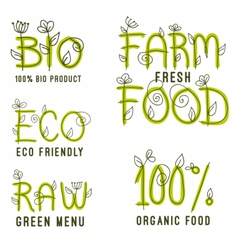 set of healthy organic food labels vector image