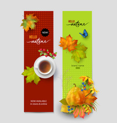 autumn advertising banner vector image vector image