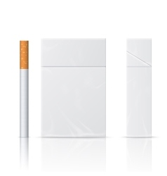 Realistic blanks of cigarette pack vector image vector image