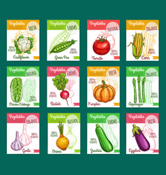 Sketch fam vegetables or veggies posters vector