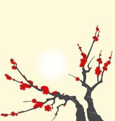 Sakura blossom branch vector image