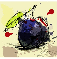 stylized plum vector image