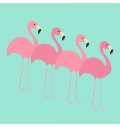 Four pink flamingo set exotic tropical bird zoo vector
