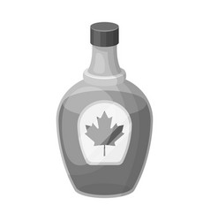Canadian maple syrup in a bottle canada single vector