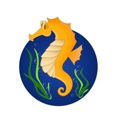 Funny sea horse Cartoon character vector image