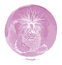 Pineapple on watercolor pink cirlce vector