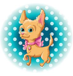 a cute dog chihuahua vector image