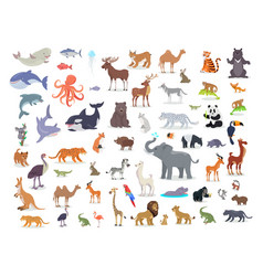 big set of world animal species cartoon vector image vector image