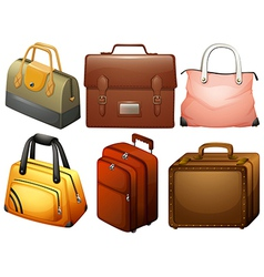 Different types of bags vector