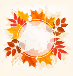 fall autumn colorful leaves background vector image vector image