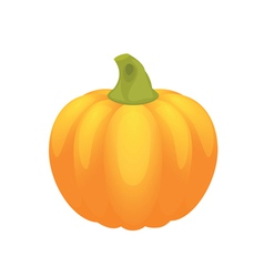 pumpkin for halloween and autumn on white backgrou vector image