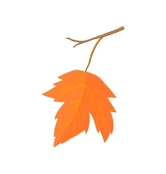 Maple leave icon cartoon style vector image