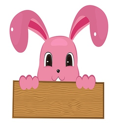 Rabbit easter with wood sign vector image vector image