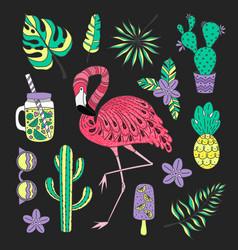 set of hand drawn elements with flamingo vector image