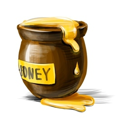 Honey pot isolated on white background vector