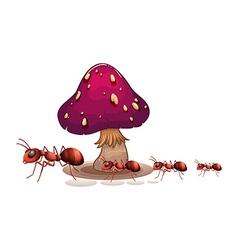 A colony of ants near the mushroom vector image