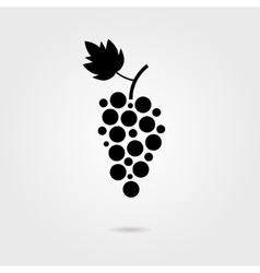 black grapes icon with shadow vector image
