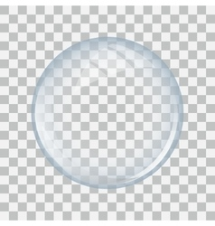 Glass sphere transparent vector image
