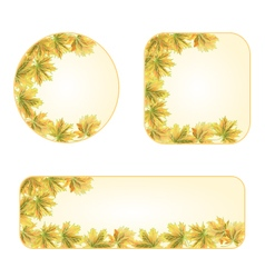 Maple leaves banners and buttons with a maple vector