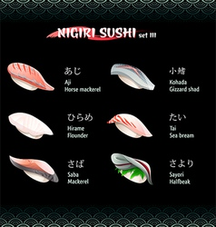 Nigiri sushi III vector image vector image