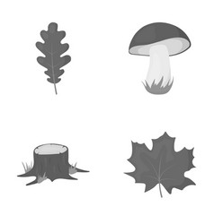 Oak leaf mushroom stump maple leafforest set vector
