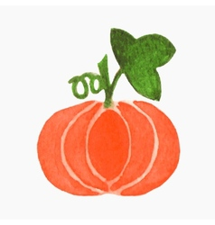 Hand-drawn pumpkin real watercolor drawing vector