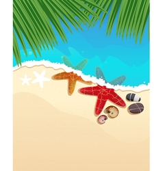Beach with starfishes and palm branches vector