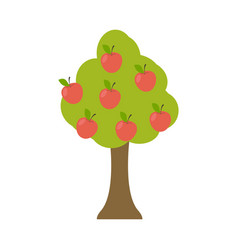 apple tree isolated garden wood with apples on vector image