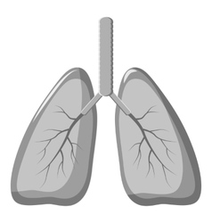 Human lungs icon gray monochrome style vector image