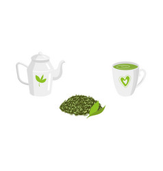 Set - green leaf tea teapot mug of tea vector