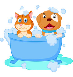 Cute dog and cat bath vector