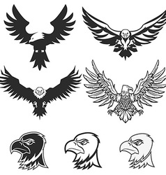 Set of eagles design elements for logo label vector