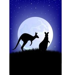 two kangaroo vector image vector image