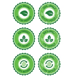 Green organic natural eco retro labels vector image