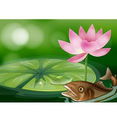 A pond with a fish a waterlily and a flower vector