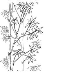bamboo seamless vertical border vector image vector image