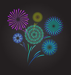 color celebration fireworks vector image