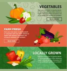 fresh vegetables localy grown at farm internet vector image vector image