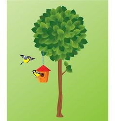 Green tree tit birds and nesting box vector