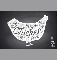 Poster with red chicken silhouette lettering vector