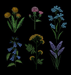 Set of embroidery plants on black background vector