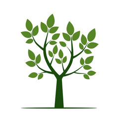 Green tree with leaf vector
