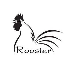 Rooster disign on white background farm vector