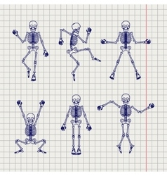 Outline skeletons set on notebook page vector