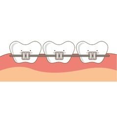 Dental healthcare orthodontics icon vector